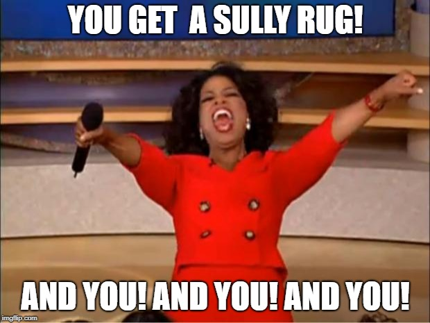 Oprah You Get A Meme | YOU GET  A SULLY RUG! AND YOU! AND YOU! AND YOU! | image tagged in memes,oprah you get a | made w/ Imgflip meme maker