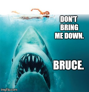 Don't Bring Me Down. | DON'T BRING ME DOWN. BRUCE. | image tagged in electric,light,orchestra,jaws,great white shark,bruce | made w/ Imgflip meme maker