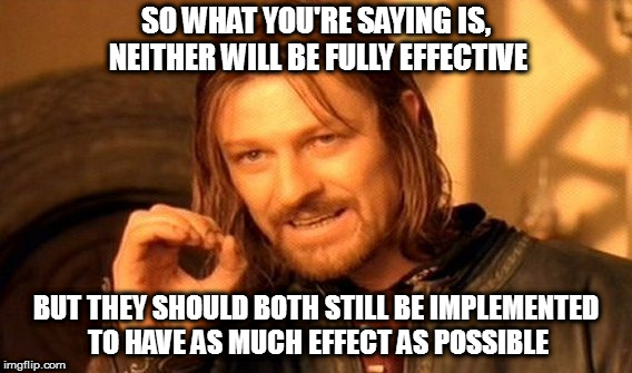 One Does Not Simply Meme | SO WHAT YOU'RE SAYING IS, NEITHER WILL BE FULLY EFFECTIVE BUT THEY SHOULD BOTH STILL BE IMPLEMENTED TO HAVE AS MUCH EFFECT AS POSSIBLE | image tagged in memes,one does not simply | made w/ Imgflip meme maker