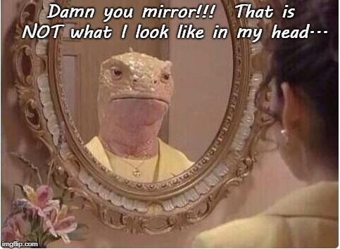 Not me... | Damn you mirror!!!  That is NOT what I look like in my head... | image tagged in damn you,mirror,look like,head | made w/ Imgflip meme maker