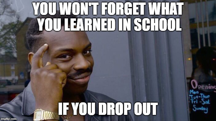 Can't forget what you never learned | YOU WON'T FORGET WHAT YOU LEARNED IN SCHOOL IF YOU DROP OUT | image tagged in memes,roll safe think about it | made w/ Imgflip meme maker