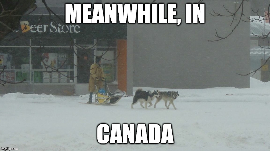 Snow's not gonna stop THIS Canadian from getting his beer | MEANWHILE, IN CANADA | image tagged in meanwhile in canada | made w/ Imgflip meme maker