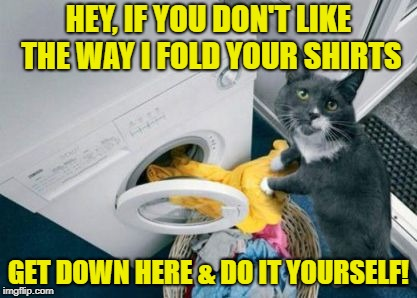 Why my clothes have cat hair on them | HEY, IF YOU DON'T LIKE THE WAY I FOLD YOUR SHIRTS GET DOWN HERE & DO IT YOURSELF! | image tagged in funny memes,cat,laundry | made w/ Imgflip meme maker