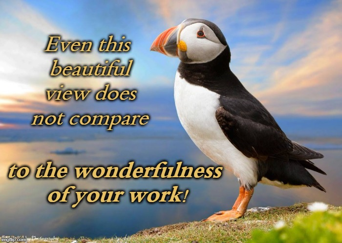 Even this beautiful view does not compare to the wonderfulness of your work! | image tagged in valid opinion puffin | made w/ Imgflip meme maker