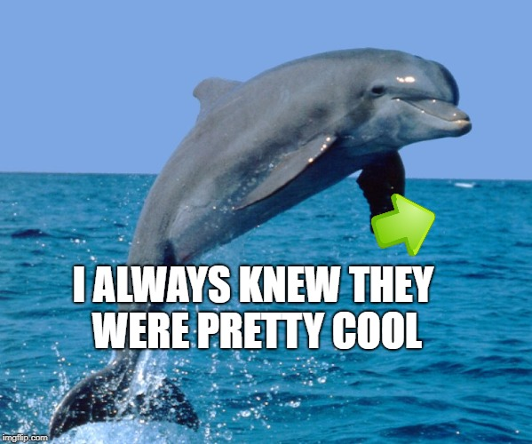 I ALWAYS KNEW THEY WERE PRETTY COOL | made w/ Imgflip meme maker