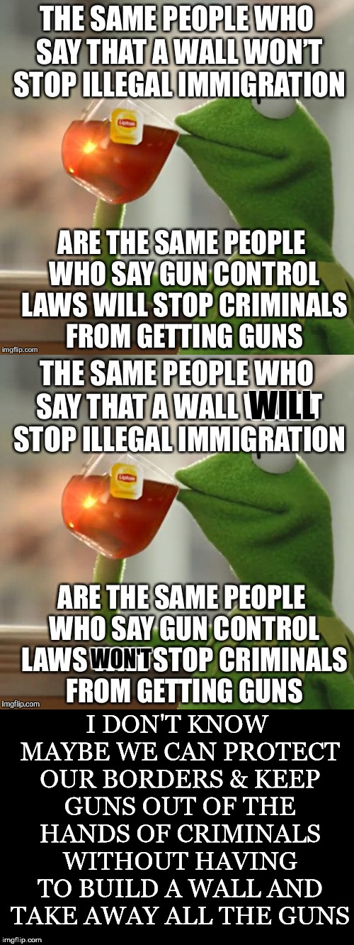 The Voice of Reason | I DON'T KNOW MAYBE WE CAN PROTECT OUR BORDERS & KEEP GUNS OUT OF THE HANDS OF CRIMINALS WITHOUT HAVING TO BUILD A WALL AND TAKE AWAY ALL THE | image tagged in kermit tea,illegal immigration,criminals,guns,border wall,gun control | made w/ Imgflip meme maker