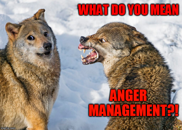 WHAT DO YOU MEAN ANGER    MANAGEMENT?! | made w/ Imgflip meme maker