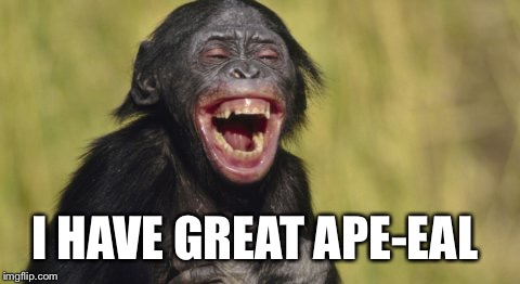 I HAVE GREAT APE-EAL | made w/ Imgflip meme maker