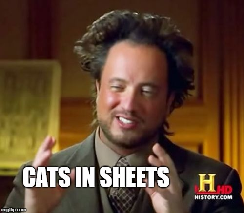 Ancient Aliens Meme | CATS IN SHEETS | image tagged in memes,ancient aliens | made w/ Imgflip meme maker