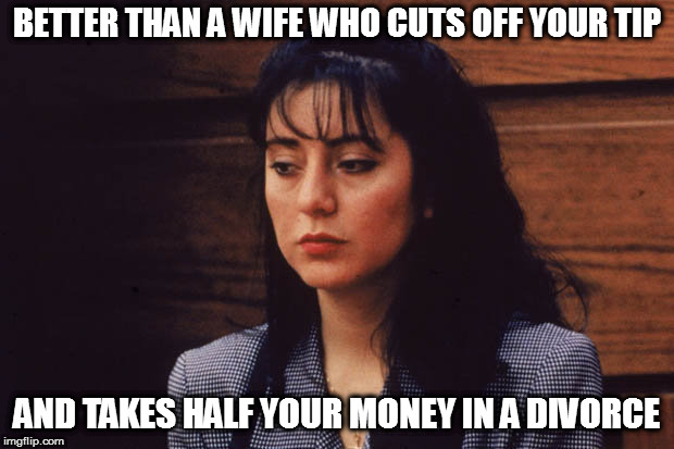 BETTER THAN A WIFE WHO CUTS OFF YOUR TIP AND TAKES HALF YOUR MONEY IN A DIVORCE | made w/ Imgflip meme maker