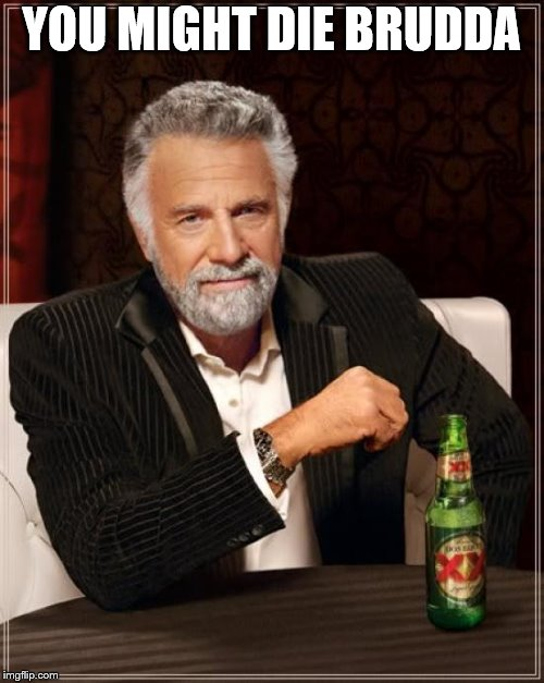 The Most Interesting Man In The World Meme | YOU MIGHT DIE BRUDDA | image tagged in memes,the most interesting man in the world | made w/ Imgflip meme maker
