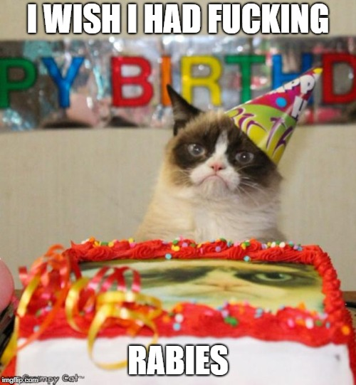 Grumpy Cat Birthday Meme | I WISH I HAD F**KING RABIES | image tagged in memes,grumpy cat birthday,grumpy cat | made w/ Imgflip meme maker