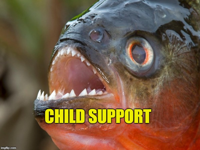 CHILD SUPPORT | made w/ Imgflip meme maker