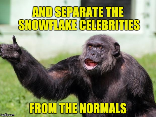 Gorilla your dreams | AND SEPARATE THE SNOWFLAKE CELEBRITIES FROM THE NORMALS | image tagged in gorilla your dreams | made w/ Imgflip meme maker