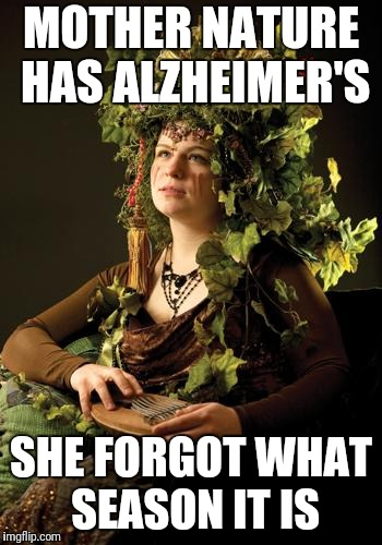 Mother Nature | MOTHER NATURE HAS ALZHEIMER'S SHE FORGOT WHAT SEASON IT IS | image tagged in mother nature | made w/ Imgflip meme maker