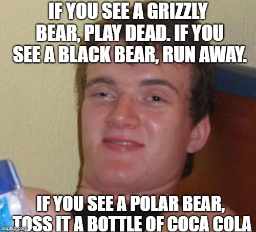 10 Guy Meme | IF YOU SEE A GRIZZLY BEAR, PLAY DEAD. IF YOU SEE A BLACK BEAR, RUN AWAY. IF YOU SEE A POLAR BEAR, TOSS IT A BOTTLE OF COCA COLA | image tagged in memes,10 guy | made w/ Imgflip meme maker
