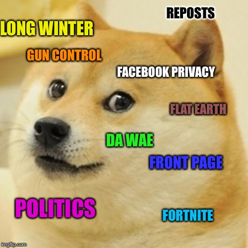 My memes get few views and less upvotes. So, here's one that's just a bunch of popular meme subjects.  Enjoy :) | FACEBOOK PRIVACY LONG WINTER DA WAE POLITICS FORTNITE FRONT PAGE GUN CONTROL FLAT EARTH REPOSTS | image tagged in memes,doge,popular memes,upvotes,views | made w/ Imgflip meme maker