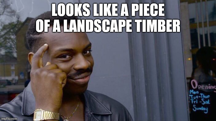 Roll Safe Think About It Meme | LOOKS LIKE A PIECE OF A LANDSCAPE TIMBER | image tagged in memes,roll safe think about it | made w/ Imgflip meme maker