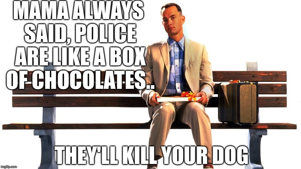 Mama always said, police are like a box of chocolates.. |  MAMA ALWAYS SAID, POLICE ARE LIKE A BOX OF CHOCOLATES.. THEY'LL KILL YOUR DOG | image tagged in forrest gump,forrest gump box of chocolates | made w/ Imgflip meme maker