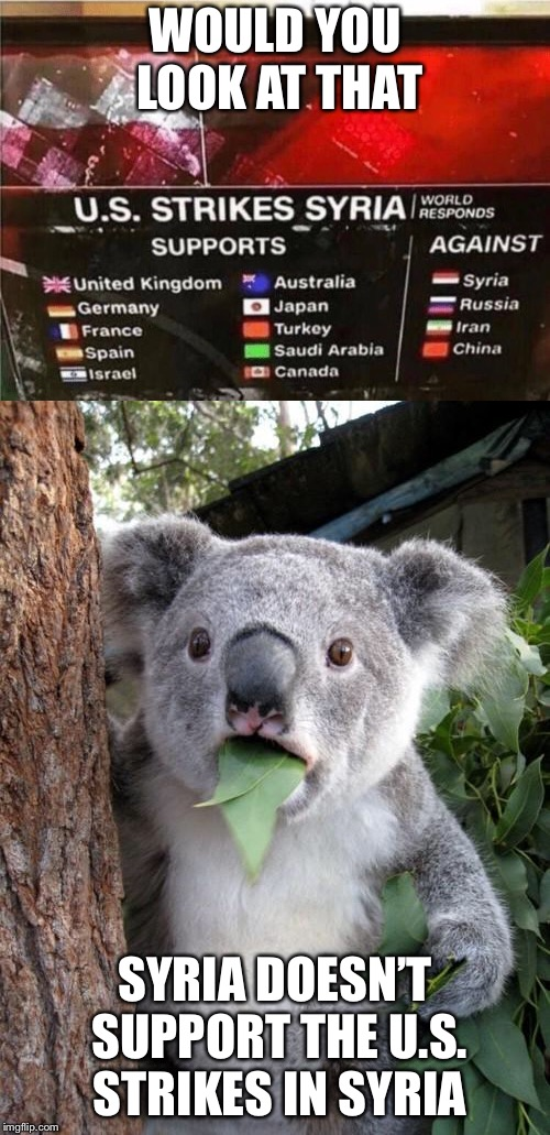 Would you believe that? | WOULD YOU LOOK AT THAT SYRIA DOESN'T SUPPORT THE U.S. STRIKES IN SYRIA | image tagged in memes,surprised koala,surprise,irony,syria | made w/ Imgflip meme maker