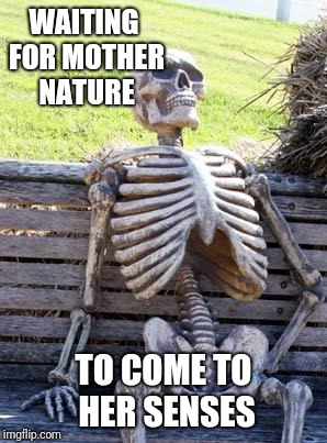 Waiting Skeleton Meme | WAITING FOR MOTHER NATURE TO COME TO HER SENSES | image tagged in memes,waiting skeleton | made w/ Imgflip meme maker