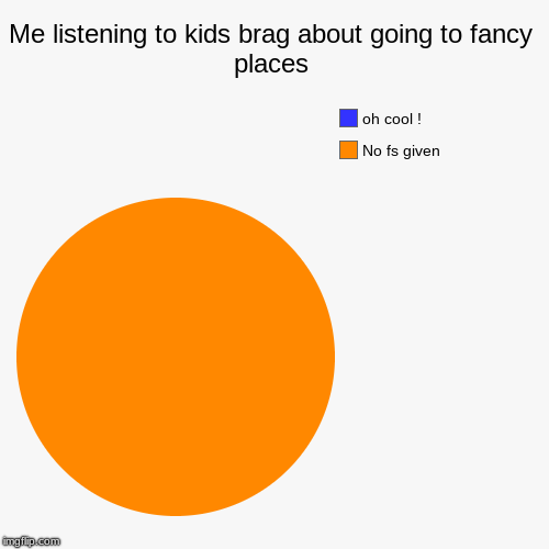 Me listening to kids brag about going to fancy places | No fs given, oh cool ! | image tagged in funny,pie charts | made w/ Imgflip pie chart maker