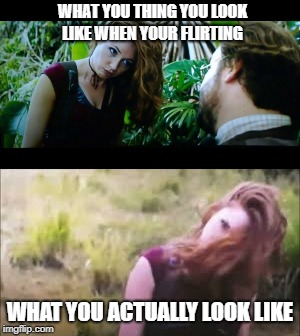 funny jumanji  | WHAT YOU THING YOU LOOK LIKE WHEN YOUR FLIRTING WHAT YOU ACTUALLY LOOK LIKE | image tagged in too funny | made w/ Imgflip meme maker