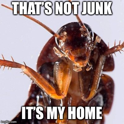 Roach | THAT'S NOT JUNK IT'S MY HOME | image tagged in roach | made w/ Imgflip meme maker