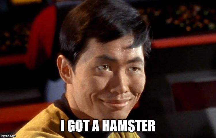 I GOT A HAMSTER | made w/ Imgflip meme maker