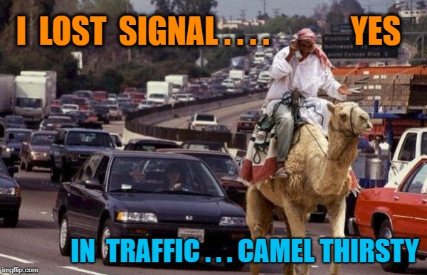 Living in America. | I  LOST  SIGNAL . . . .             YES IN  TRAFFIC . . . CAMEL THIRSTY | image tagged in successful arab guy | made w/ Imgflip meme maker