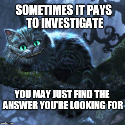 Cheshire cat memes | SOMETIMES IT PAYS TO INVESTIGATE YOU MAY JUST FIND THE ANSWER YOU'RE LOOKING FOR | image tagged in cheshire cat | made w/ Imgflip meme maker