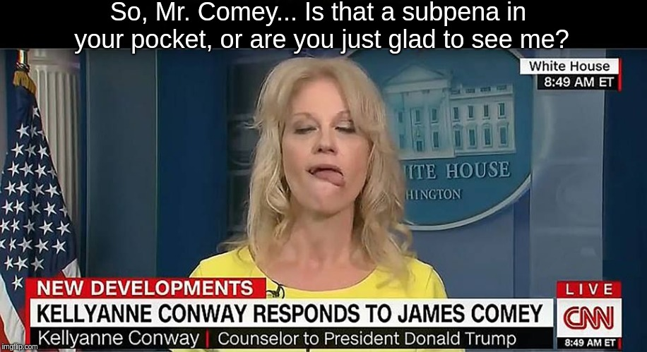 Kellyanne Conway Tongue 1 | So, Mr. Comey... Is that a subpena in your pocket, or are you just glad to see me? | image tagged in kellyanne conway tongue 1 | made w/ Imgflip meme maker