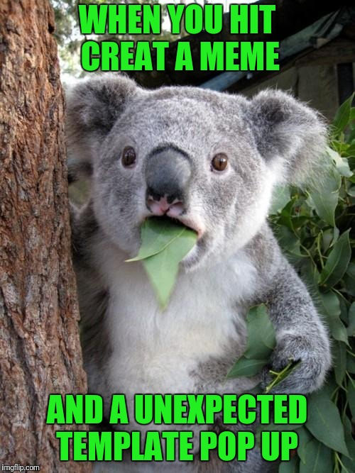 Surprised Koala Meme | WHEN YOU HIT CREAT A MEME AND A UNEXPECTED TEMPLATE POP UP | image tagged in memes,surprised koala | made w/ Imgflip meme maker