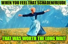 Look At All These Meme | WHEN YOU FEEL THAT SCHADENFREUDE THAT WAS WORTH THE LONG WAIT | image tagged in memes,look at all these | made w/ Imgflip meme maker