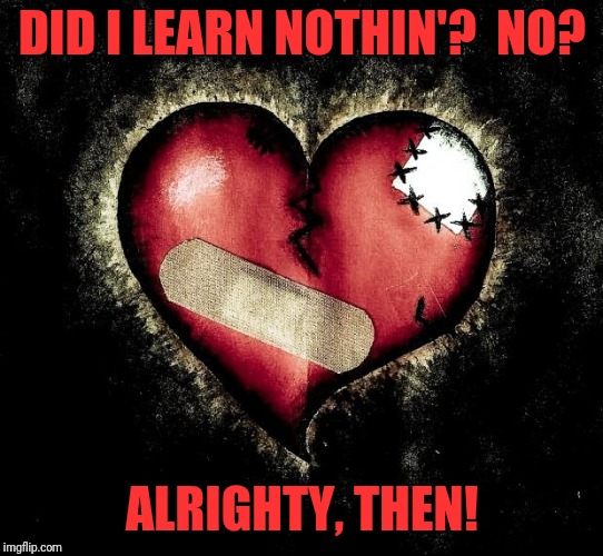 Can't blame it for trying | DID I LEARN NOTHIN'?  NO? ALRIGHTY, THEN! | image tagged in broken heart,memes,heart,broken | made w/ Imgflip meme maker