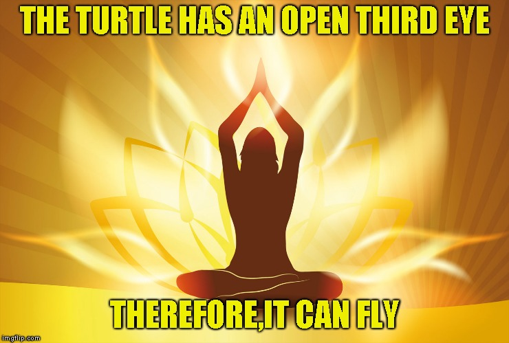 THE TURTLE HAS AN OPEN THIRD EYE THEREFORE,IT CAN FLY | made w/ Imgflip meme maker