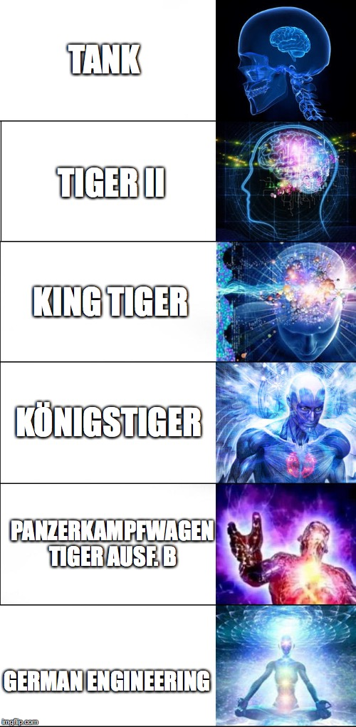 Only If You Understood History | TANK GERMAN ENGINEERING TIGER II KING TIGER KÖNIGSTIGER PANZERKAMPFWAGEN TIGER AUSF. B | image tagged in expanding brain meme - 6 levels | made w/ Imgflip meme maker