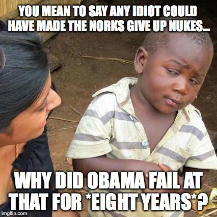 Deny this reality all you want, but you will still be wrong.  | YOU MEAN TO SAY ANY IDIOT COULD HAVE MADE THE NORKS GIVE UP NUKES... WHY DID OBAMA FAIL AT THAT FOR *EIGHT YEARS*? | image tagged in 2018,north korea,nukes,president trump | made w/ Imgflip meme maker