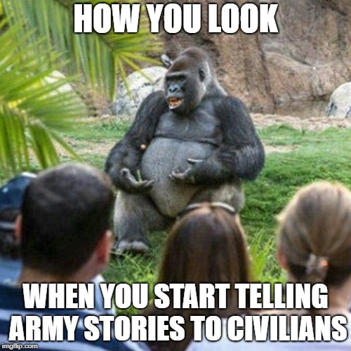 Literally, every time | HOW YOU LOOK WHEN YOU START TELLING ARMY STORIES TO CIVILIANS | image tagged in professor gorilla,army,military humor,funny memes | made w/ Imgflip meme maker