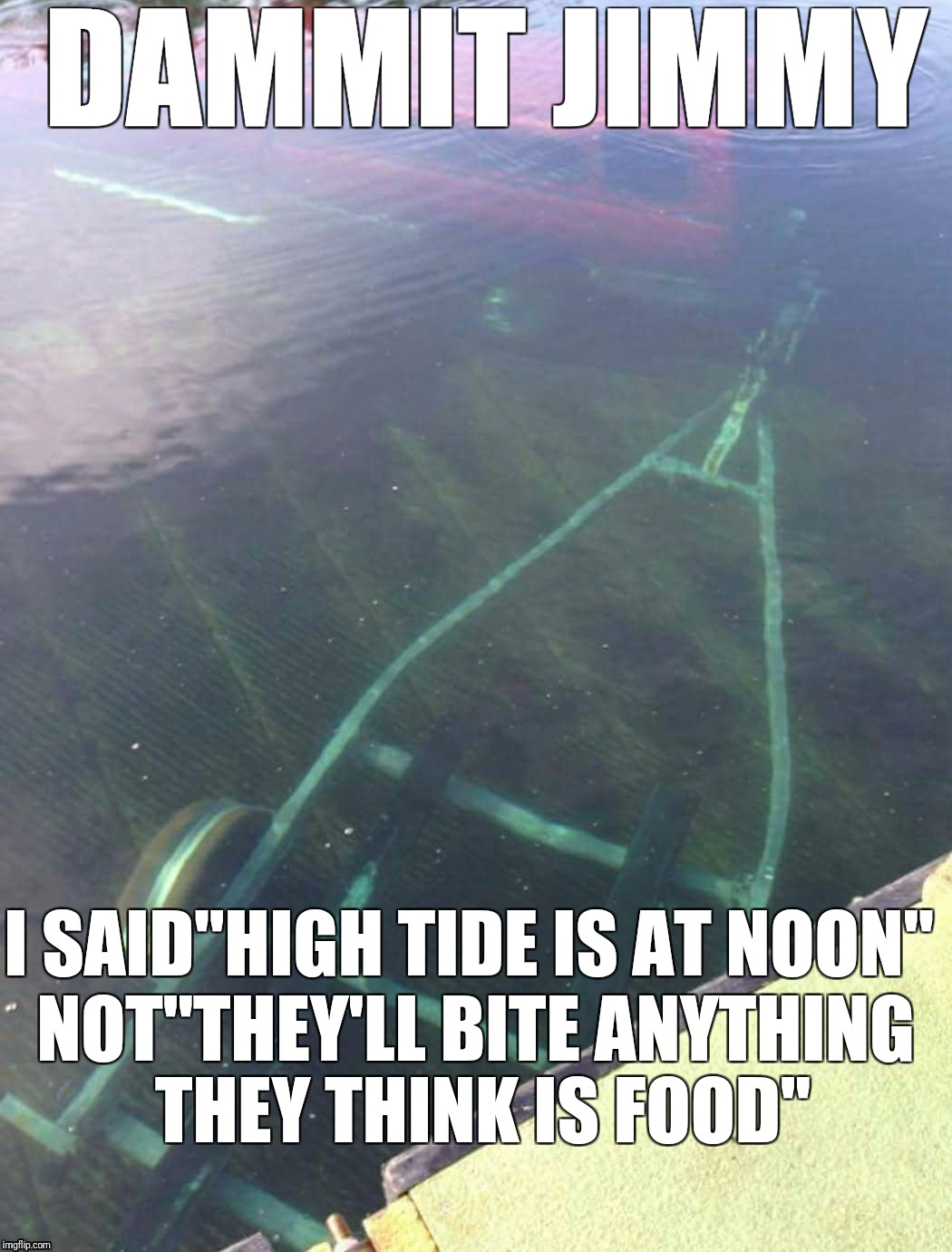 "Terrible parking job | DAMMIT JIMMY I SAID""HIGH TIDE IS AT NOON"" NOT""THEY'LL BITE ANYTHING THEY THINK IS FOOD"" 