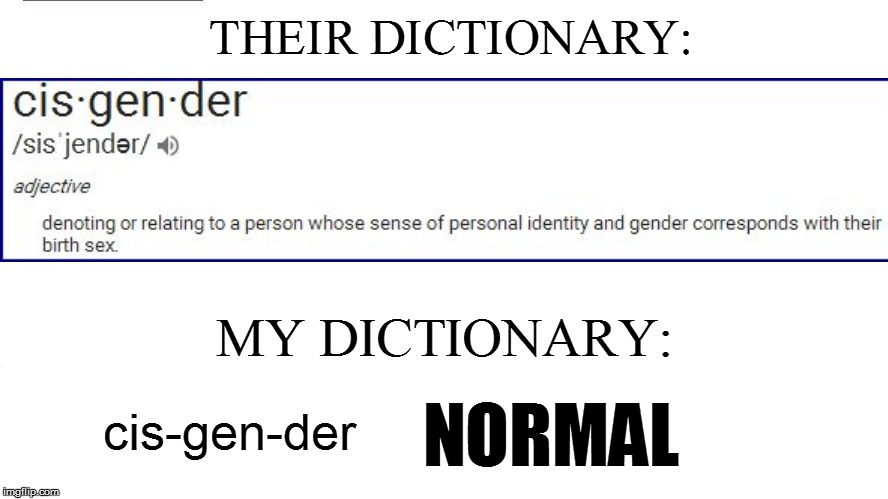 THEIR DICTIONARY: MY DICTIONARY: cis-gen-der NORMAL | made w/ Imgflip meme maker