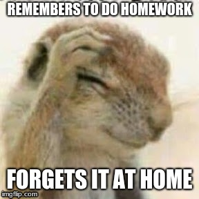 This is me today | REMEMBERS TO DO HOMEWORK FORGETS IT AT HOME | image tagged in homework | made w/ Imgflip meme maker