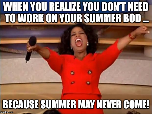 Oprah You Get A Meme | WHEN YOU REALIZE YOU DON'T NEED TO WORK ON YOUR SUMMER BOD ... BECAUSE SUMMER MAY NEVER COME! | image tagged in memes,oprah you get a | made w/ Imgflip meme maker