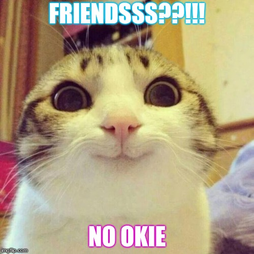 Smiling Cat | FRIENDSSS??!!! NO OKIE | image tagged in memes,smiling cat | made w/ Imgflip meme maker