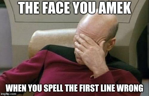 Captain Picard Facepalm | THE FACE YOU AMEK WHEN YOU SPELL THE FIRST LINE WRONG | image tagged in memes,captain picard facepalm | made w/ Imgflip meme maker