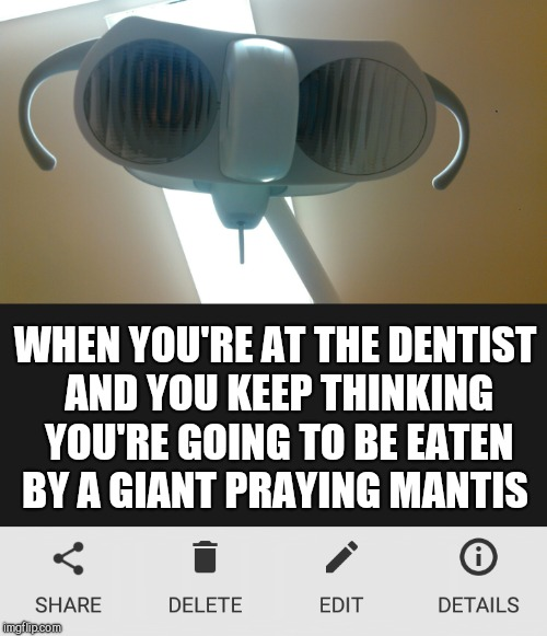 I'll never look at that light the same lol | WHEN YOU'RE AT THE DENTIST AND YOU KEEP THINKING YOU'RE GOING TO BE EATEN BY A GIANT PRAYING MANTIS | image tagged in jbmemegeek,dentist,scumbag dentist,praying mantis,memes | made w/ Imgflip meme maker