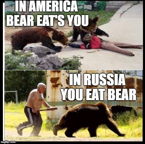 Be Like Bill Meme | IN AMERICA BEAR EAT'S YOU IN RUSSIA YOU EAT BEAR | image tagged in memes,be like bill | made w/ Imgflip meme maker