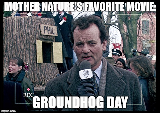 Groundhog Day | MOTHER NATURE'S FAVORITE MOVIE: GROUNDHOG DAY | image tagged in groundhog day | made w/ Imgflip meme maker