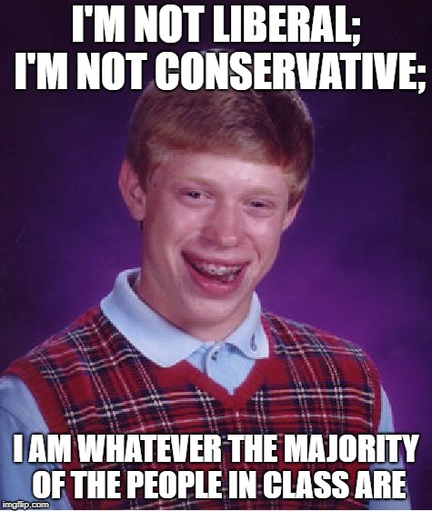 Bad Luck Brian Meme | I'M NOT LIBERAL; I'M NOT CONSERVATIVE; I AM WHATEVER THE MAJORITY OF THE PEOPLE IN CLASS ARE | image tagged in memes,bad luck brian,political meme,lol,funny,best meme | made w/ Imgflip meme maker