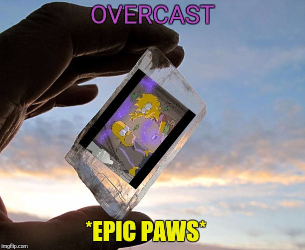OVERCAST *EPIC PAWS* | made w/ Imgflip meme maker